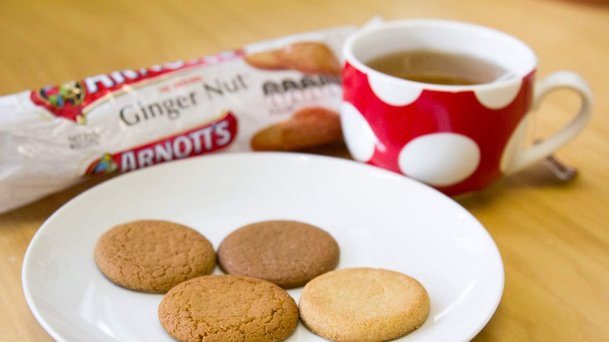 Ginger nut biscuits on a plate