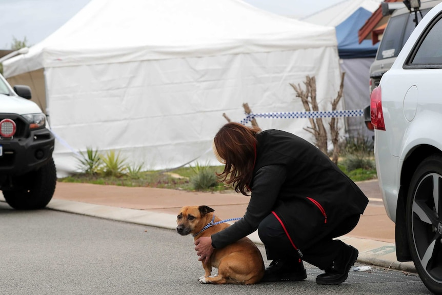 A woman kneels down on a road between next to a small brown dog between two cars with a police tent behind.