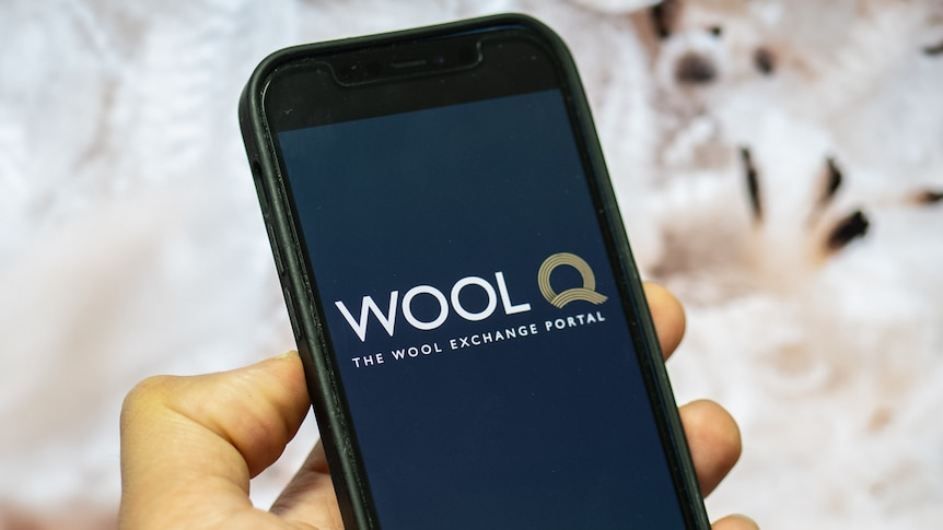 A person's hand holding a smartphone with the WoolQ logo displayed on the screen.