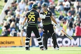 Two international cricketers meet mid-pitch and touch gloves during a big T20I partnership.