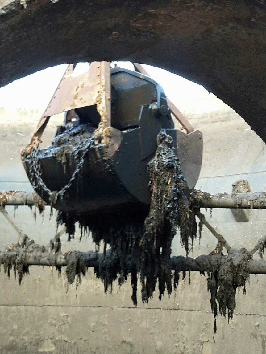 A digger pulls clumps of sewerage-soaked wipes out of a drain.