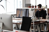 A person sits at a computer in an office. Other desks around them with computers are empty.
