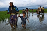 A Rohingya woman walks with a child through a mud puddle in a rice field in Bangladesh.