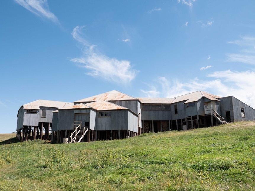 A photo of a large woolshed built into a hillside.