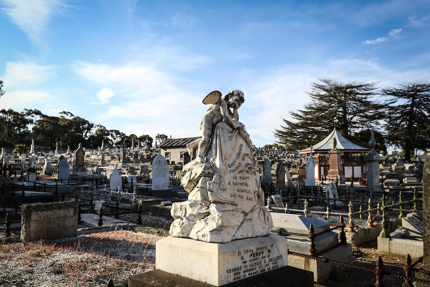 A statue of an angel in the Bendigo cemetery surrounded by gravestones.