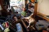 Two-year-old James surveys the flood damage at his house in The Gap.