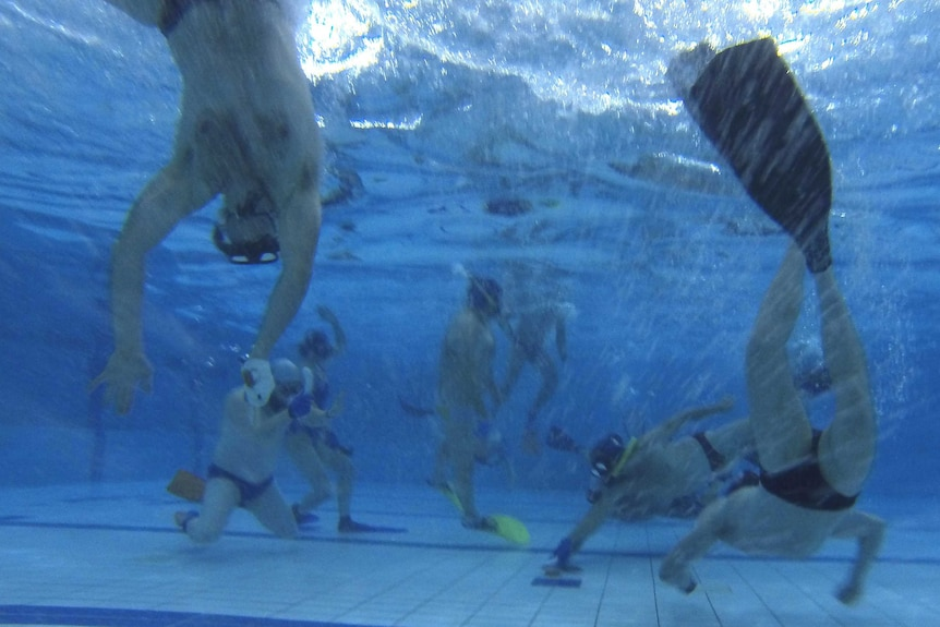 Underwater hockey in action in the Tuggeranong Pool