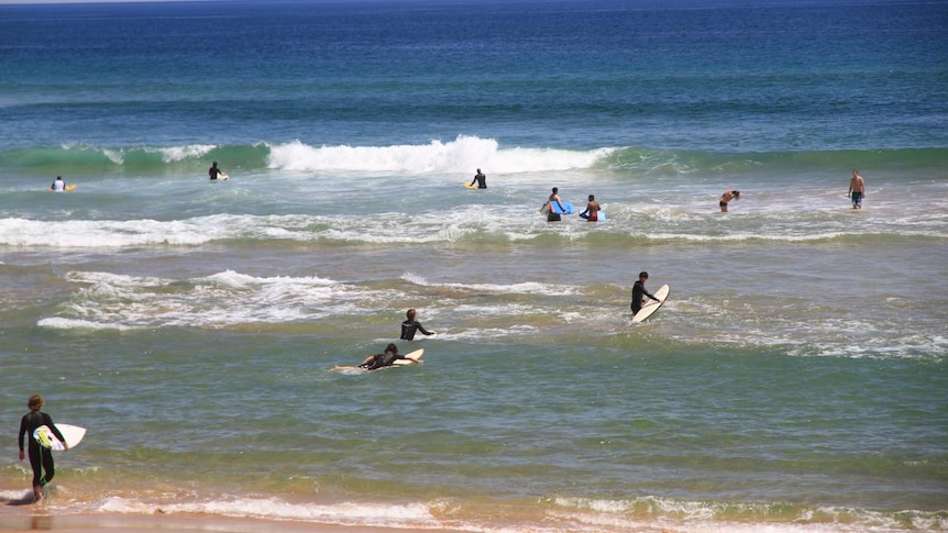 Surfers and swimmers in the water at a beach on Victoria's Mornington Peninsula.
