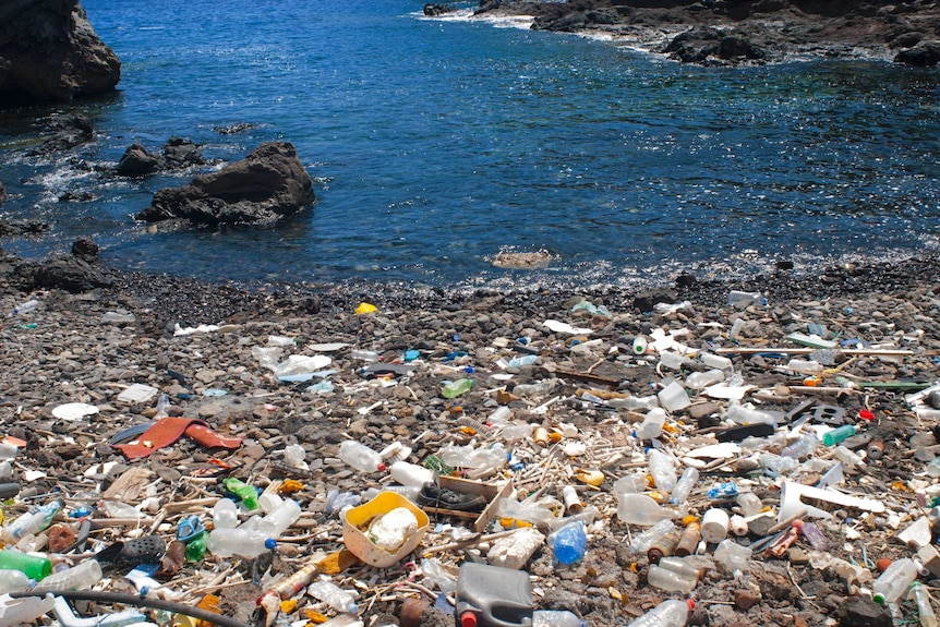 A mass of garbage in the ocean