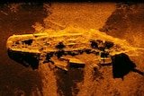 A bright orange and brown sonar image of the shipwreck.