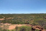 A photo taken looking out at scrubby bushland with large boulders.