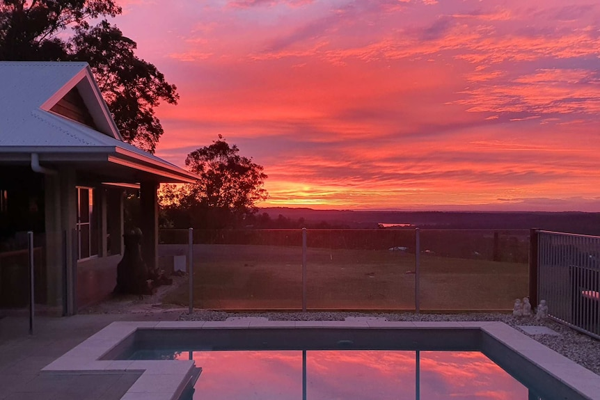 A pink sky is reflected in a pool in a backyard.
