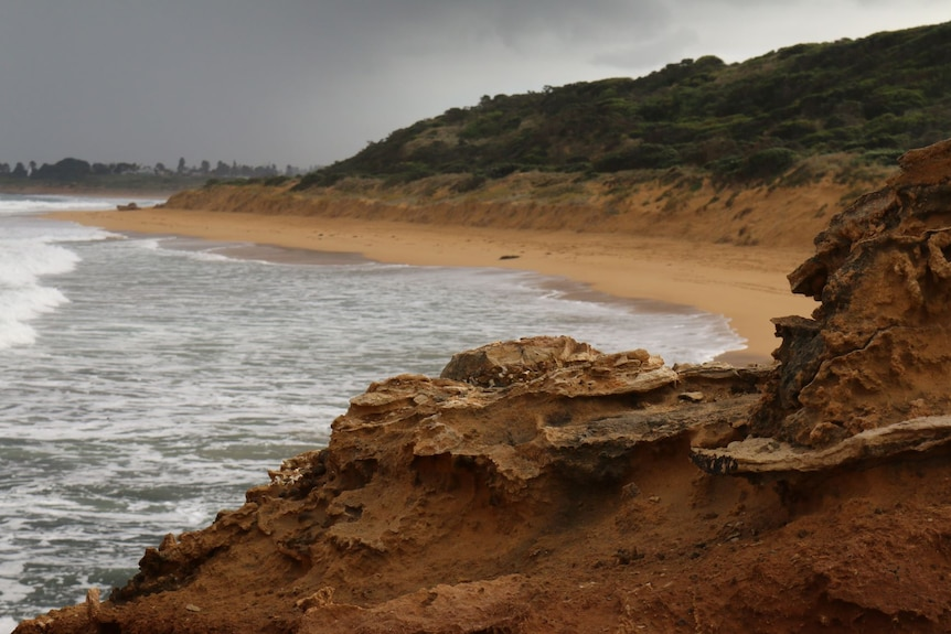 A coastal cliff with the beach in the background.