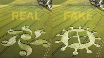 A fake crop circle on the right in the shape of a microsoft logo next to the real image, the shape of a flower