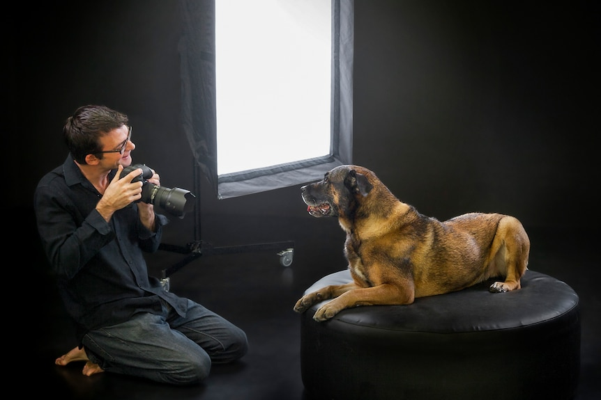 Pet photographer Ken Drake in studio with a large dog on a couch.