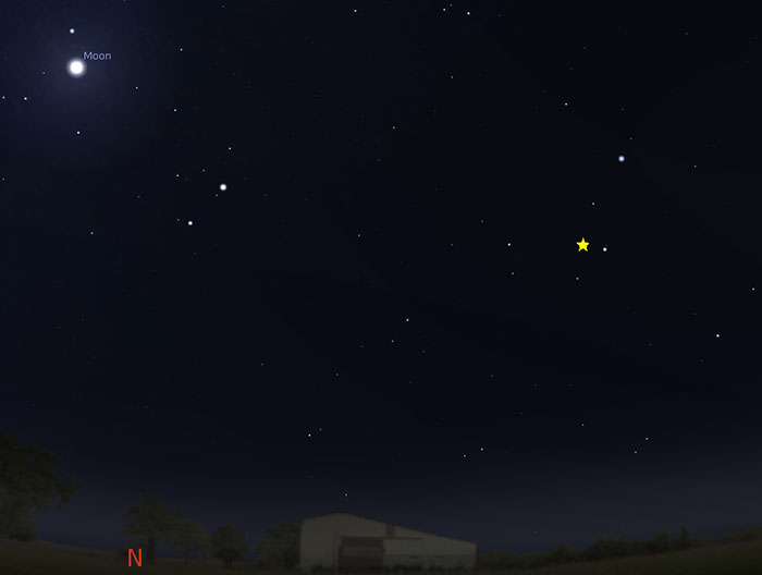 Sky map showing Leonid meteor shower