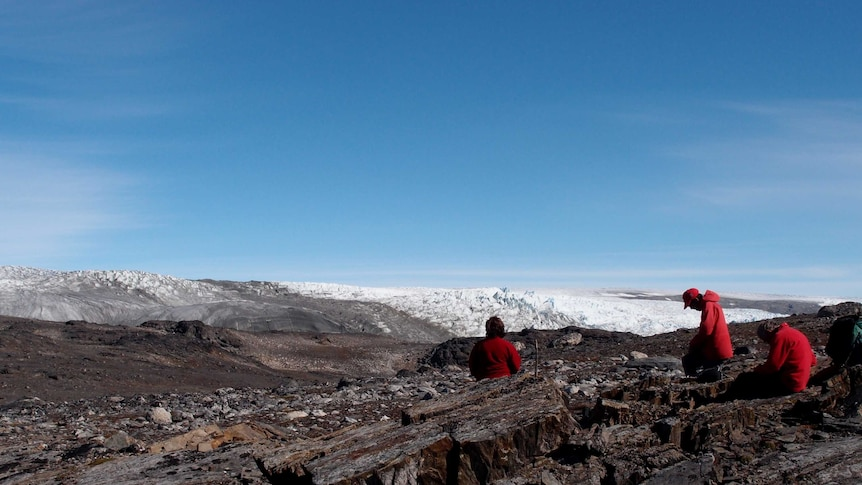 An image of Greenland where fossils were found
