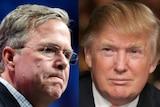 Composite of Jeb Bush and Donald Trump