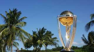 ICC cricket world cup trophy custom