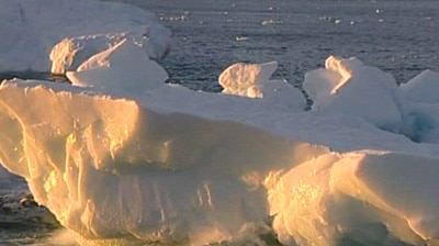 Scientists say glaciers are melting at a faster rate.