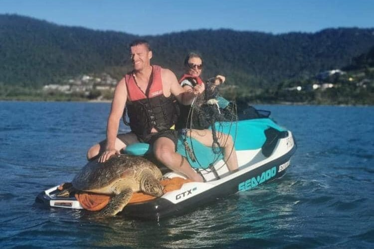 Two people on a jetski with a turtle being carried on the front.