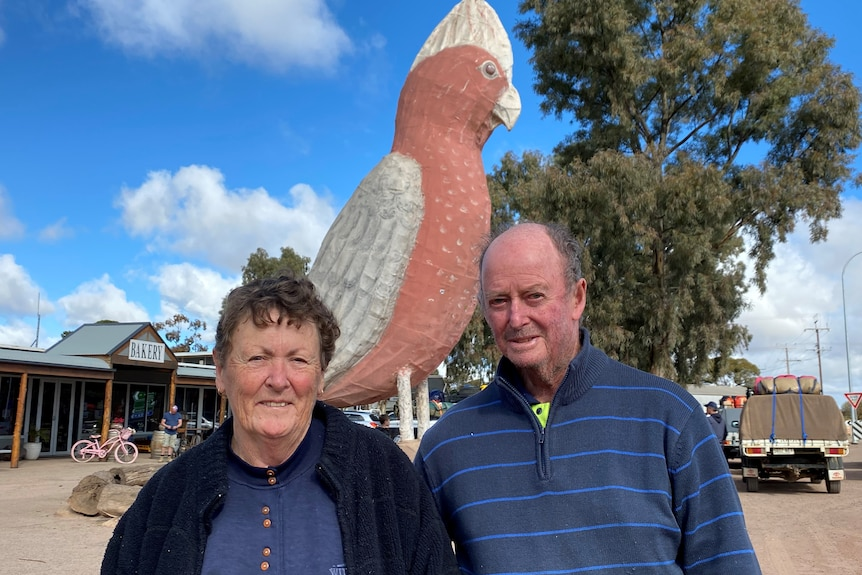 Head and shoulder of man and woman standing in front of large pink and grey galah and tree.