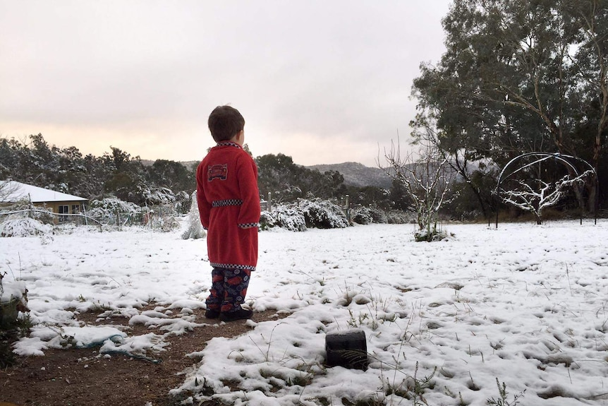 Snow covers the ground at Ballandean near Stanthorpe in July 2015.