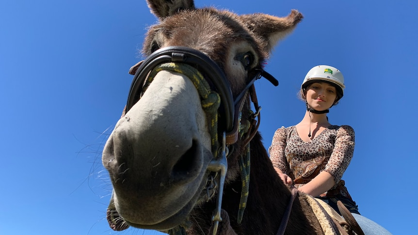 A young woman wearing a helmet sits astride a donkey, smiling.