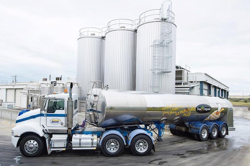 True Organic milk tanker in front of milk factory in Geelong, Victoria