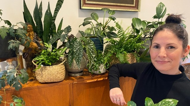 Woman poses with her indoor plant collection at home, she has experimented with misting some for humidity and growth.