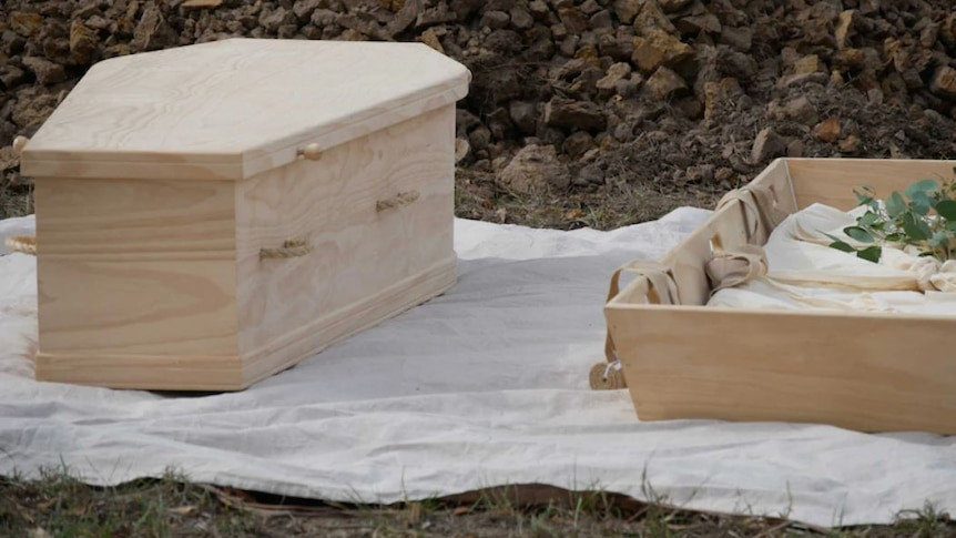An unpolished wooden coffin with lid sits on the ground with grass visible in background.