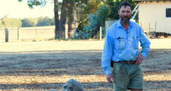 Marc Deas stands with his sheep