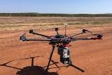 Bird-scaring drone