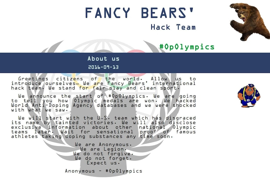 A screenshot of the homepage of the fancybear.net website.