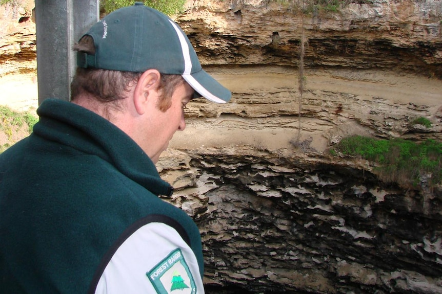 ForestrySA Ranger Mark Whan looks out on Hell's Hole