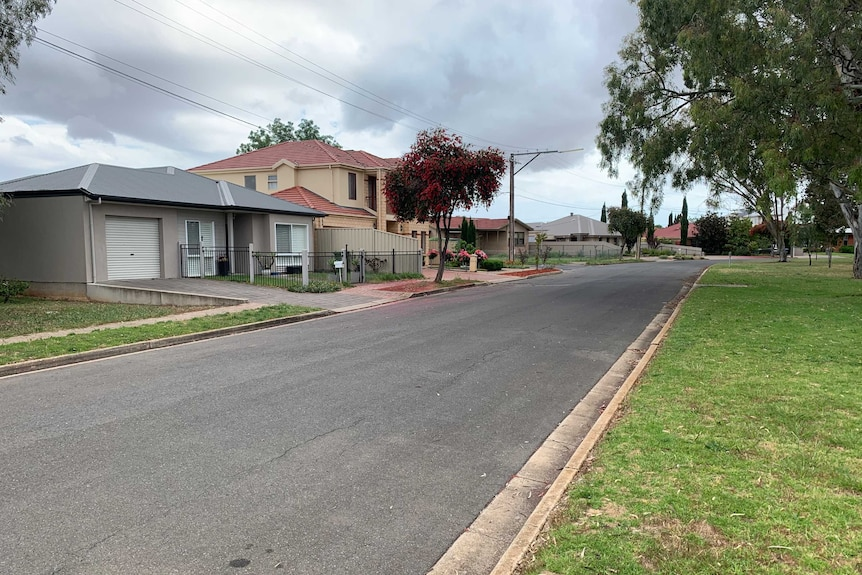 A suburban street with houses on the left side of the street and a park on the right side.