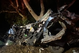 A twisted wreck of a car near a tree