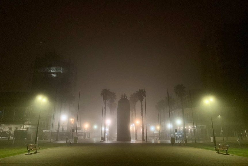 Fog over a monument and palm trees