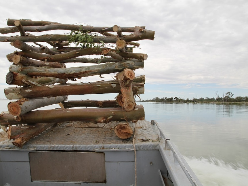 logs in a cube shape structure on bow of boat