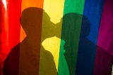 Two people kiss behind a rainbow flag.