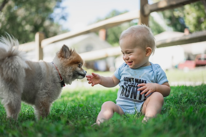 A baby sits on grass, holding his hand out to a fluffy puppy.