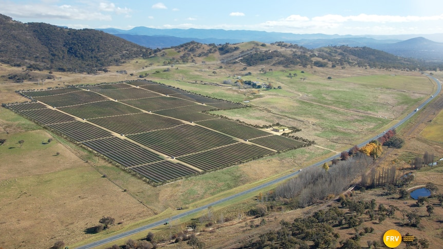 Royalla residents say they have not been directly consulted about the planned solar farm.