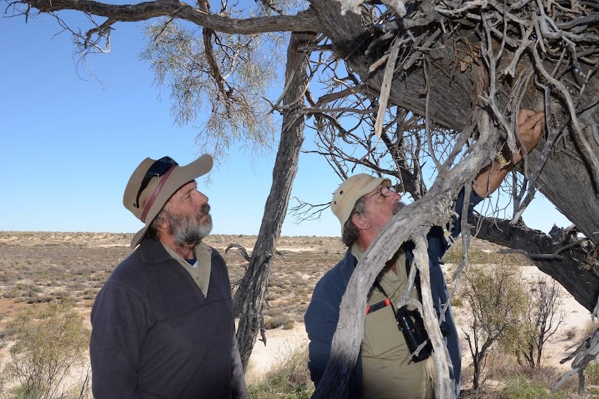 Ecologists John Young and Keith Bellchambers from the AWC