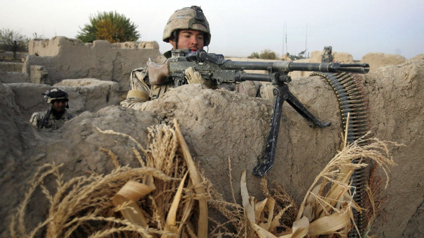 There have been 131 Canadian casualties in Afghanistan.