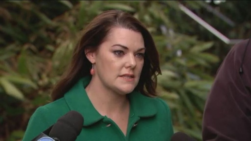 'I'm over it': Sarah Hanson-Young calls for Leyonhjelm's resignation