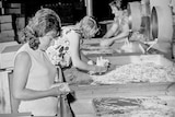Female factory workers sorting through timber ice cream sticks