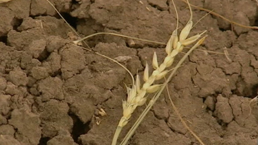 Victorian farmers have welcomed a $115-million drought relief package.