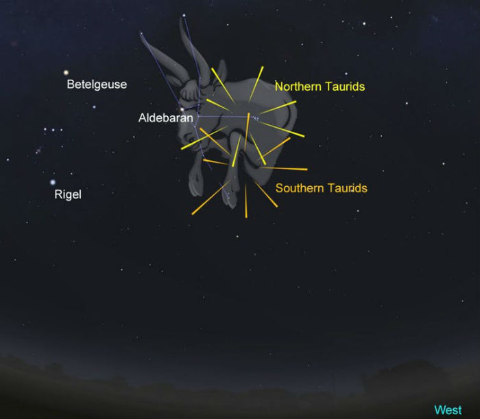 The position of the Northern and Southern Taurids as compared to Taurus