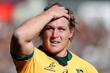 A Wallabies player stands with his right hand on his head during a Bledisloe Cup Test against New Zealand.