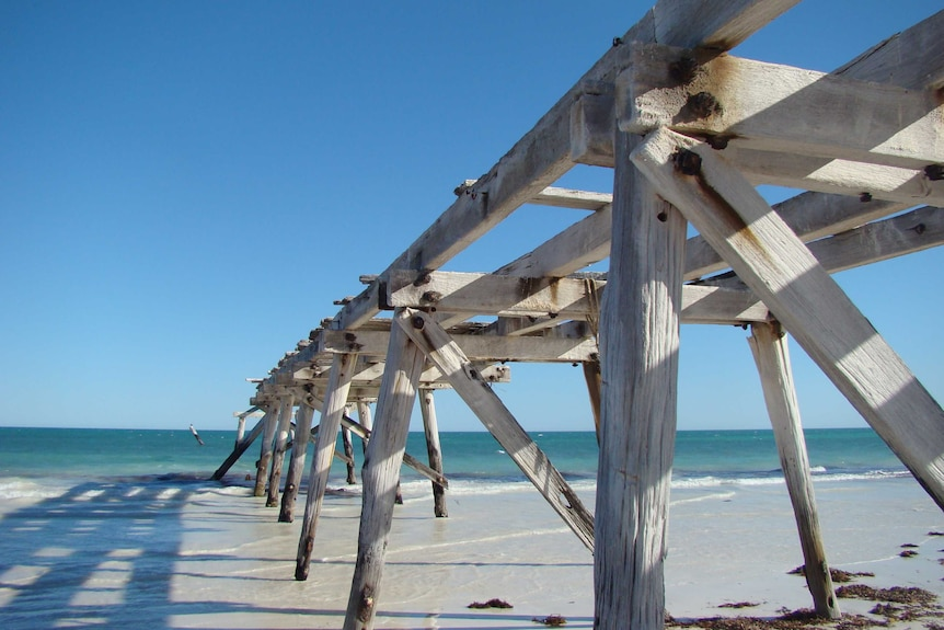 Timbers from an old jetty jut into a blue sea on a clear day